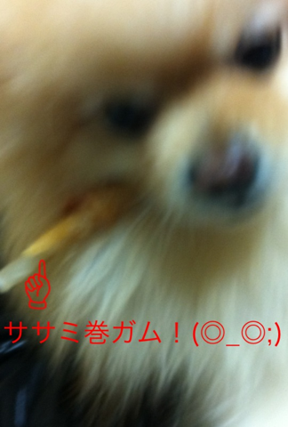 image-20120225111426.png